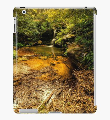 Hunts Creek Waterfall (iPad Retina/2 case) iPad Case/Skin