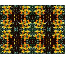 Kaleidoscopic Garden 14 Photographic Print