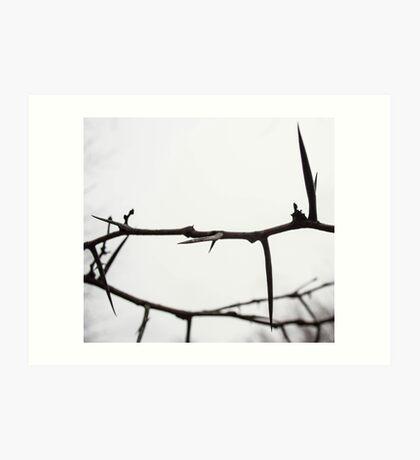 A Crown of Thorns Art Print