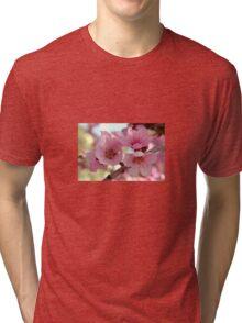 Peach Blossoms Tri-blend T-Shirt