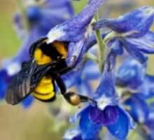 Bumble Bee On Larkspur Sticker