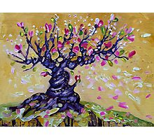 Magnolia Tree Flower Painting Oil on Canvas by Ekaterina Chernova Photographic Print