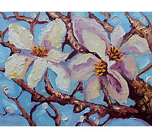 Magnolia Flower Painting Oil on Canvas Fine Art by Ekaterina Chernova Photographic Print