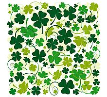 Lucky clovers Nr. 01 Photographic Print