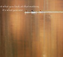 It's What You See by Bill Wakeley