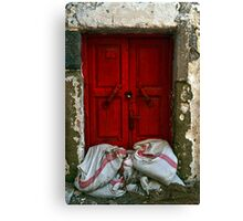 closed red door Canvas Print