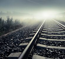 Moonlit Tracks by Mikko Lagerstedt
