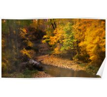 Bright Fall Colors Poster