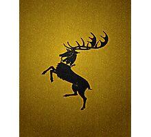 House Baratheon (Game of Thrones) Photographic Print