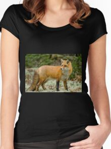 Red Fox Women's Fitted Scoop T-Shirt