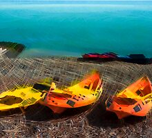 Kayaks on the Beach by Paul Stevens