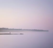 In the mist.. by Susan Kaufman