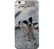 Hi There! iPhone Case/Skin