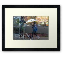 Dim Sum in the Rain Framed Print
