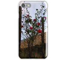 Barbe Wire Roses iPhone Case/Skin