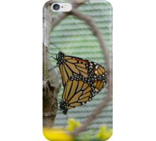 Nature in Repose iPhone Case/Skin