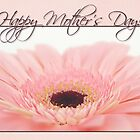 Mother's Day Card - Pink Gerbera Daisy by Tracy Friesen