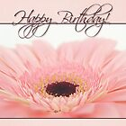 Happy Birthday Card - Pink Gerbera Daisy by Tracy Friesen