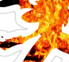 Mega Blaziken used Blast Burn Sticker