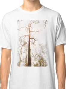 Winter in the Woodlands Classic T-Shirt