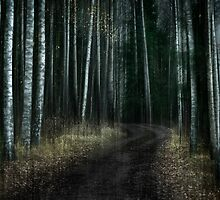 Dark Path by Mikko Lagerstedt