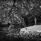 Alfred Nicholas Gardens by Jim Worrall