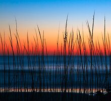 Dune Grass Dawn by Kenneth Keifer