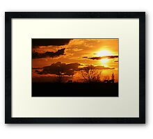 #1 Natures Hue's are Gold Framed Print