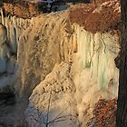 Minnehaha Falls Ice by Gary Horner