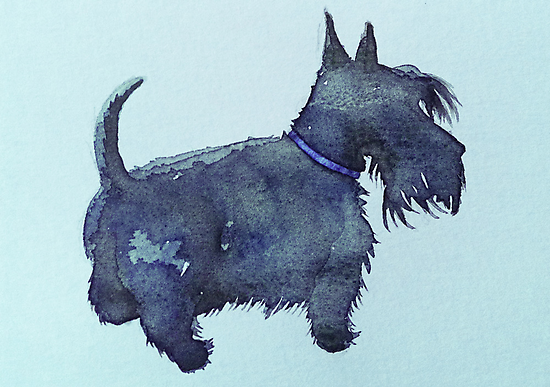 Scottie watercolour (blue) by BonniePortraits