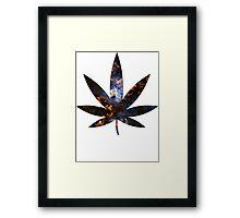 Pot Leaf Framed Print