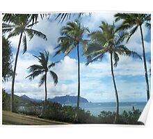 Tropical Beach, Oahu, Hawaii Poster