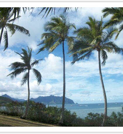 Tropical Beach, Oahu, Hawaii Sticker