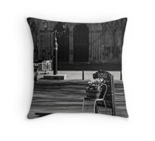 Gordon's moment in Spring light Throw Pillow