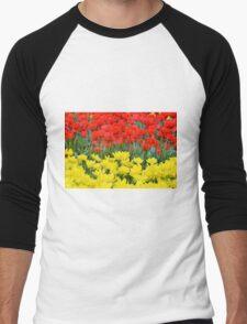 Red and Yellow Tulips Men's Baseball ¾ T-Shirt
