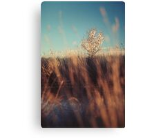 Will Canvas Print