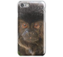 marmaset monkey iPhone Case/Skin