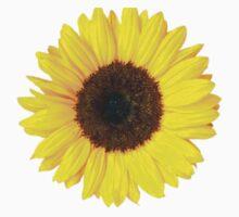 Sunflower  by semiradical