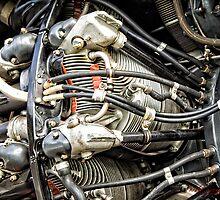 Cylinder Blocks of a Propeller Engine by Wolf Sverak