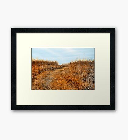 Mysterious Prairie Framed Print