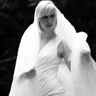 Angel of Light by Brian Edworthy