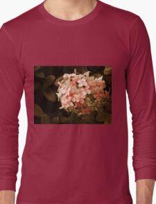 Secrets in Sepia Long Sleeve T-Shirt