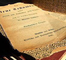 New Testament - German 1896 by Sandra  Aguirre