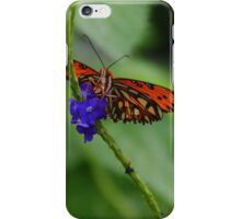 Butterlfy on a Vine iPhone Case/Skin