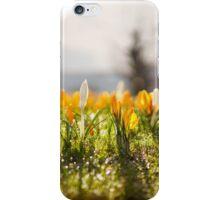 Spring is here! Bergen, Norway. iPhone Case/Skin