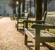 Relax. Bergen, Norway. by Paulius Bruzdeilynas