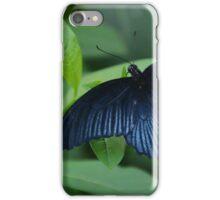 Black Butterfly iPhone Case/Skin