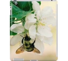 Apple and Bumble iPad Case/Skin