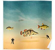 fish life  Poster