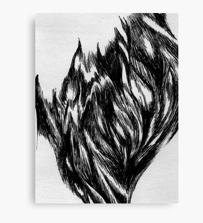 Fur Canvas Print